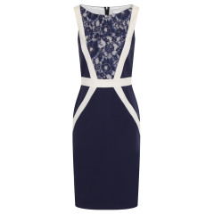 Paper Dolls Navy And Cream Lace Panel Dress