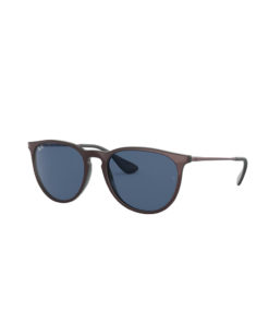 Ray-Ban Erika Colour Mix Cipria on Black Sunglasses